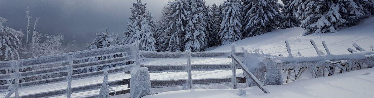 1. Skitour: Thal – Kieneck – Unterberg (1.342m) – Thal