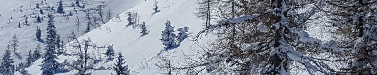 11. Skitour: Gscheid – Gsenger – Göller