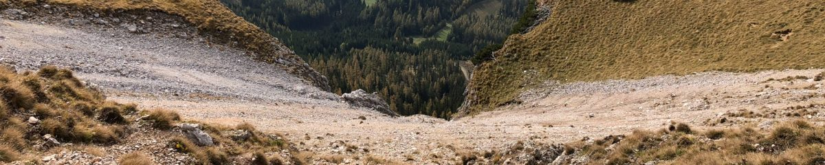 Klettern: Karreralmsteig