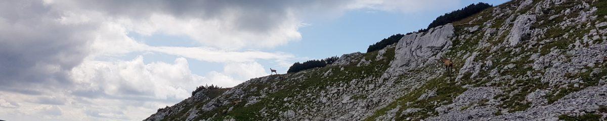 Bergsteigen: Karreralmsteig – Habsburghaus